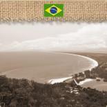 Brésil Santos Bourbon