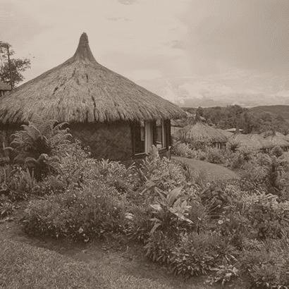 Équitable Bio - Papouasie